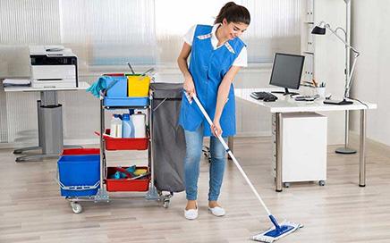 Erenköy Ofise Bayan Temizlik Elemanı